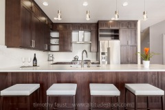 Real Estate Modern Kitchen