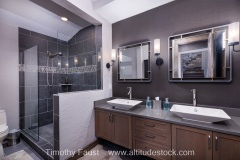 12-luxury-real-estate-bathroom